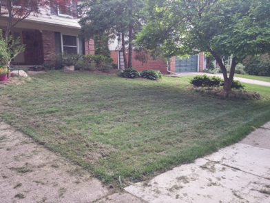 Lawn Aeration Company - Livonia MI - Independent Lawn Service - Before_ILS