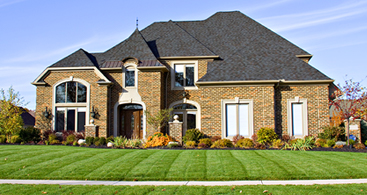 Local Shrub Care Services Belleville MI - Independent Lawn Service - lawn